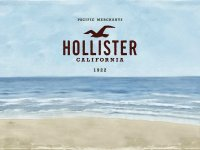 hollister-beach